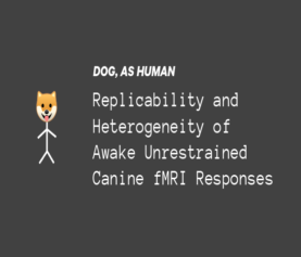 Replicability and heterogeneity of awake unrestrained canine FMRI responses.